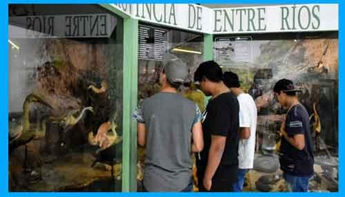 museo antonio serrano parana entre ríos, restos fósiles, en parana, vasijas de barro, pueblos originarios de entre rios, mesopotamia, litoral